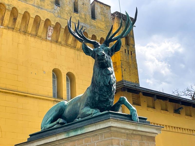 Lennés vergessener Park – der Wildpark in Potsdam